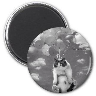 Imán: Vuelo divertido del gato con los globos Imán