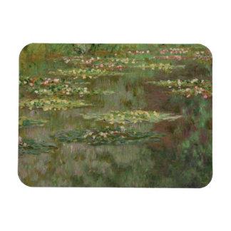 Imán Waterlilies o la charca Nympheas del lirio de agua