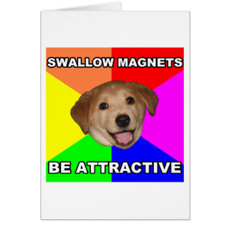 Imanes del trago del perro del consejo tarjeta
