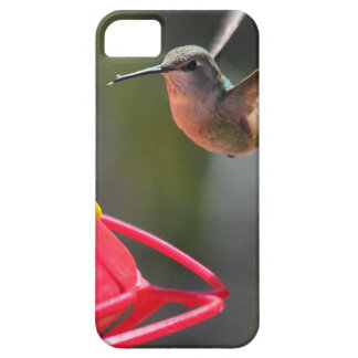 IMG_2319.JPG FUNDA PARA iPhone SE/5/5s