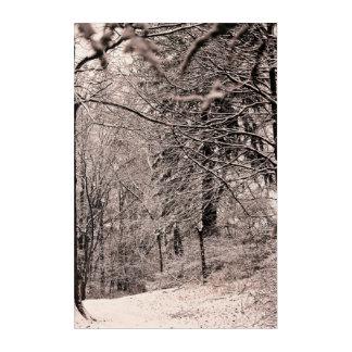 Impresión Acrílica Bosque del invierno