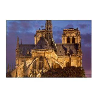 Impresión Acrílica Catedral de Notre Dame en la noche