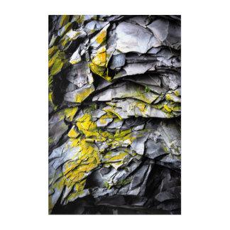 Impresión Acrílica El gris cubierto de musgo oscila la foto