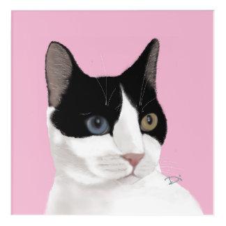 Impresión Acrílica Gato del ojo de Bowie