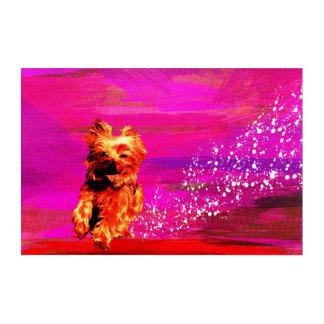 Impresión Acrílica Yorkshire Terrier