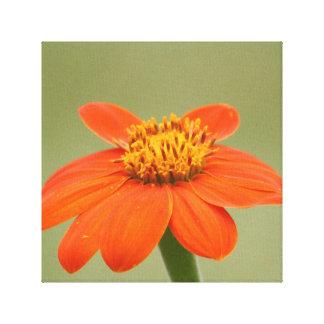 Impresión anaranjada de la lona de la flor