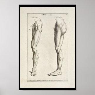 Impresión artística del arte de 1691 de la