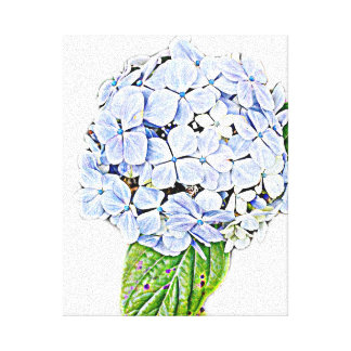 Impresión azul del Hydrangea