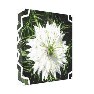 Impresión blanca de la lona de la flor del allium lienzo envuelto para galerías