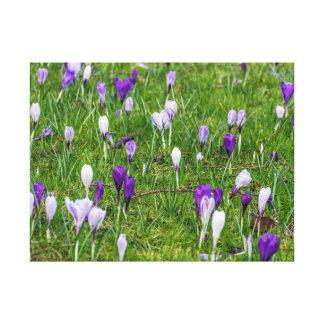 Impresión blanca y púrpura de la lona de las