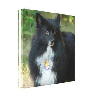 Impresión blanco y negro de la lona de Pomeranian Impresiones En Lona