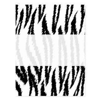 Impresión blanco y negro del tigre. Modelo del Postal