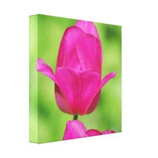 Impresión bonita de la lona de los tulipanes lona envuelta para galerias