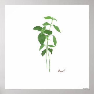 Impresión botánica de la hierba del ilustracion el