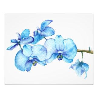 Impresión botánica de la orquídea azul foto