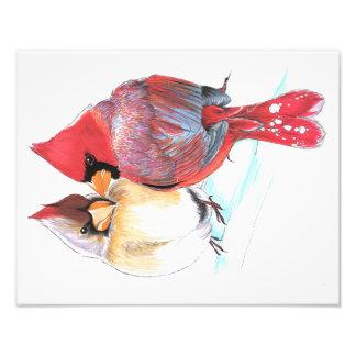 Impresión cardinal septentrional del ejemplo foto