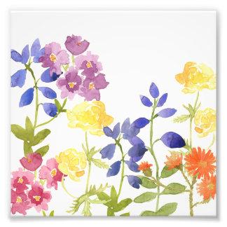 Impresión colorida de la foto del Watercolour de