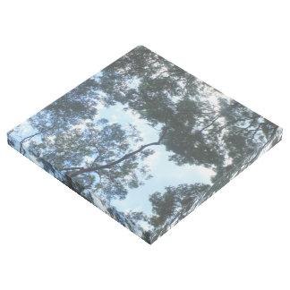 Impresión Con Bastidor Árboles y hojas