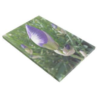 Impresión Con Bastidor brote púrpura del iris