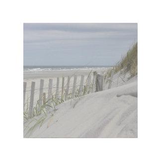 Impresión Con Bastidor Dunas resistidas de la cerca y de arena en la