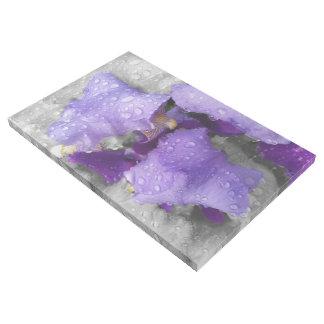 Impresión Con Bastidor gotas de agua en el iris