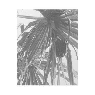 Impresión Con Bastidor HALA - Odoratissimus del Pandanus