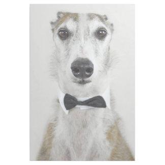 Impresión Con Bastidor Perro gris vestido para arriba