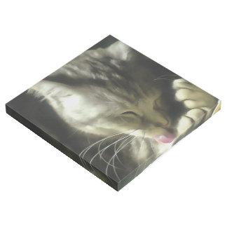 Impresión Con Bastidor Piel suave y apacible y ronroneo de un gato gris