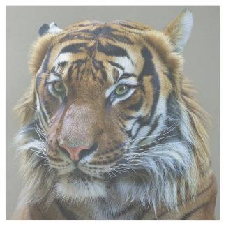 Impresión Con Bastidor Retrato imponente del tigre