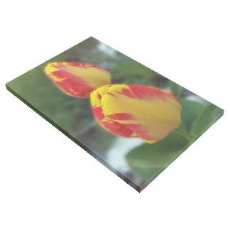 Impresión Con Bastidor tulipanes rojos amarillos