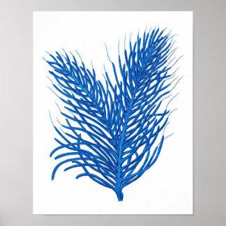 """""""Impresión coralina del mar azul de # poster de la"""