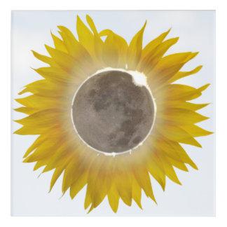 Impresión de acrílico imponente 1 del eclipse