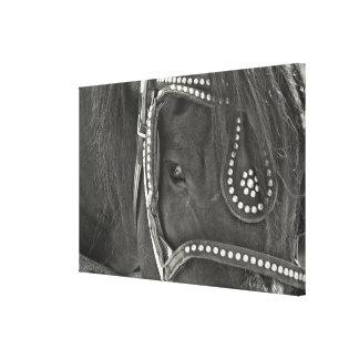 Impresión DE CUERO de la lona del NEGRO 24 x 16