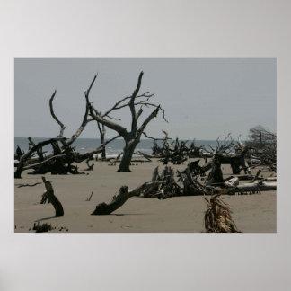 Impresión de la erosión de playa posters