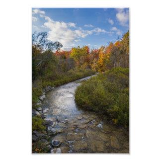Impresión de la foto de la corriente del otoño