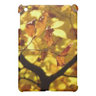 Impresión de la foto de las hojas de otoño