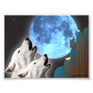 Impresión de la foto de los lobos de la luna azul
