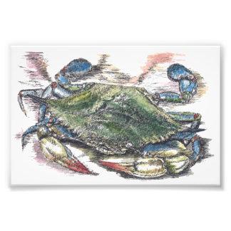 Foto Impresión de la foto del arte del cangrejo azul