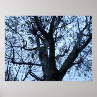 Impresión de la fotografía de la silueta del árbol