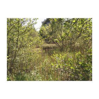 Impresión de la lona de la charca del bosque de