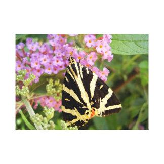 Impresión de la lona de la mariposa del tigre del