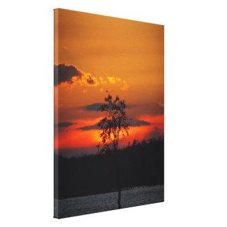 Impresión de la lona de la puesta del sol del