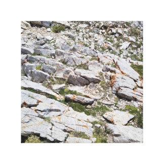 Impresión de la lona de la roca