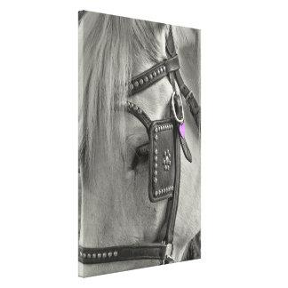 Impresión de la lona de la SABANA 24 x 16 del