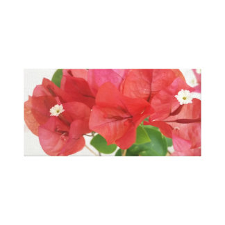 Impresión de la lona de las flores del