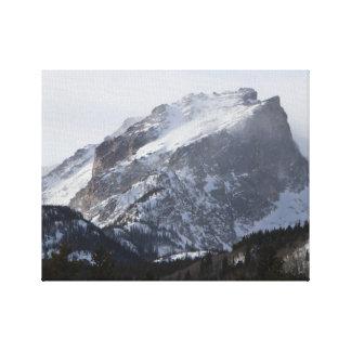 Impresión de la lona del día Nevado