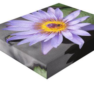 Impresión de la lona del lirio de agua impresion de lienzo