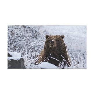 Impresión de la lona del oso grizzly de Alaska