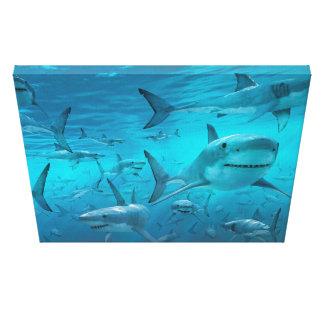 impresión de la lona del tiburón