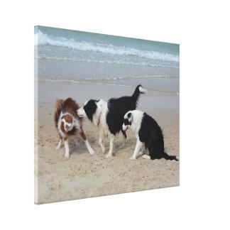 Impresión de la lona - diversión del perrito